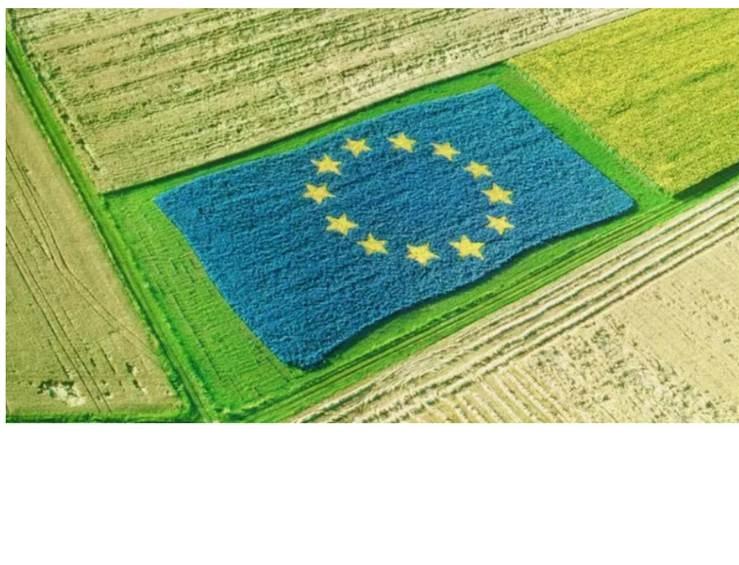 Slow Food Veranstaltung: Reform der EU Agrarpolitik: grüner, nachhaltiger, fair?